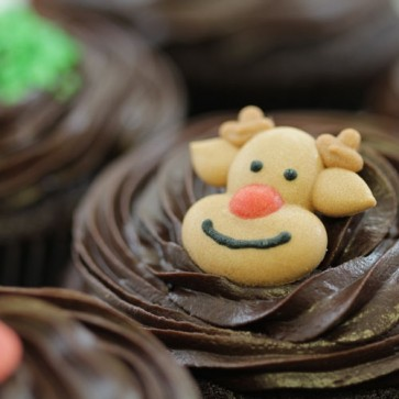 Christmas Rudolph - close up